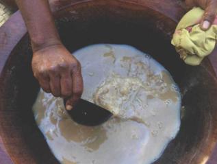 How To Approach Fiji's Kava DrinkingCeremony